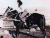 Rickey and Joann Johnson a non rider shwoing how gentle he was